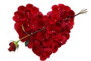Dan Zaljubljenih i Sv. Trifun